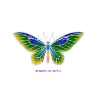 Sunlight Window Sticker - Birdwing Butterfly