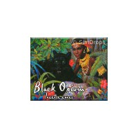Kamini Incense Cones - Black Opium - 1 Packet / 10 Cones