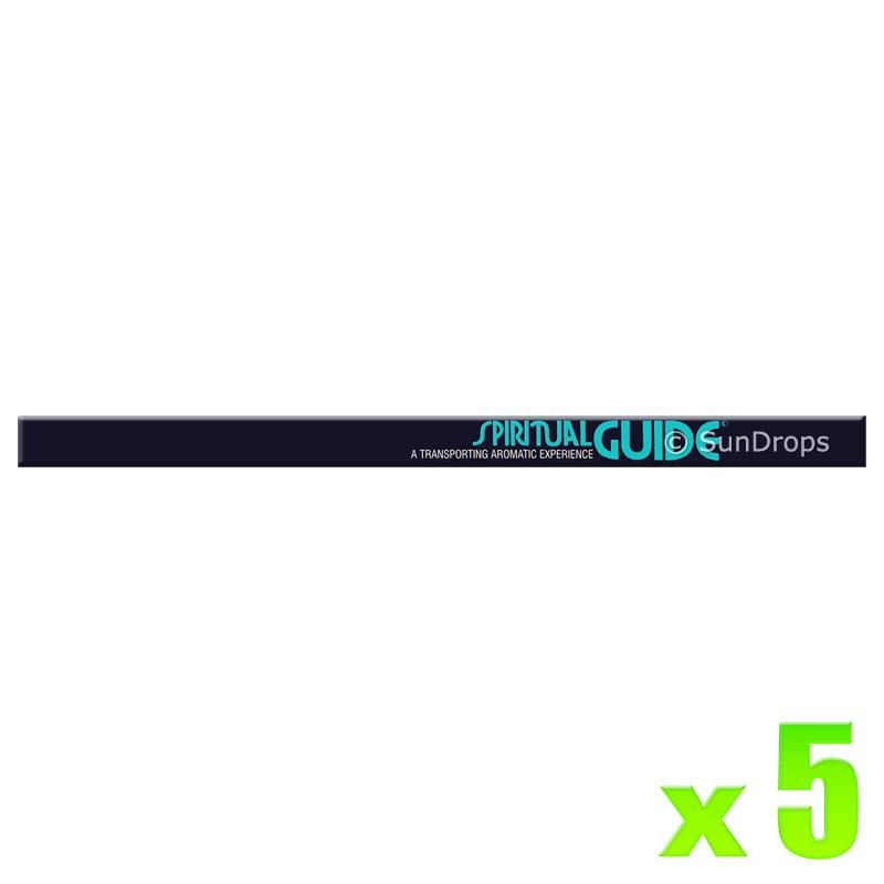 Padmini Incense Sticks - Spiritual Guide - 5 Packets / 40 Sticks