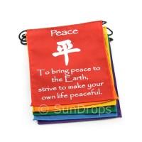 Rainbow Affirmation / Peace Flags
