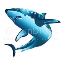 Nature Magnet - Shark