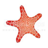 Nature Magnet - Starfish