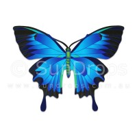 Nature Magnet - Ulysses Butterfly