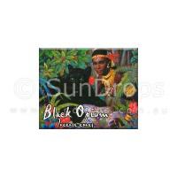 Kamini Incense Cones - Black Opium - 1 Packet / 10 Cones