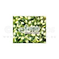 Kamini Incense Cones - Jasmine - 1 Packet / 10 Cones