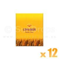 Sandesh Incense Cones - Cinnamon - 12 Packets / 120 Cones