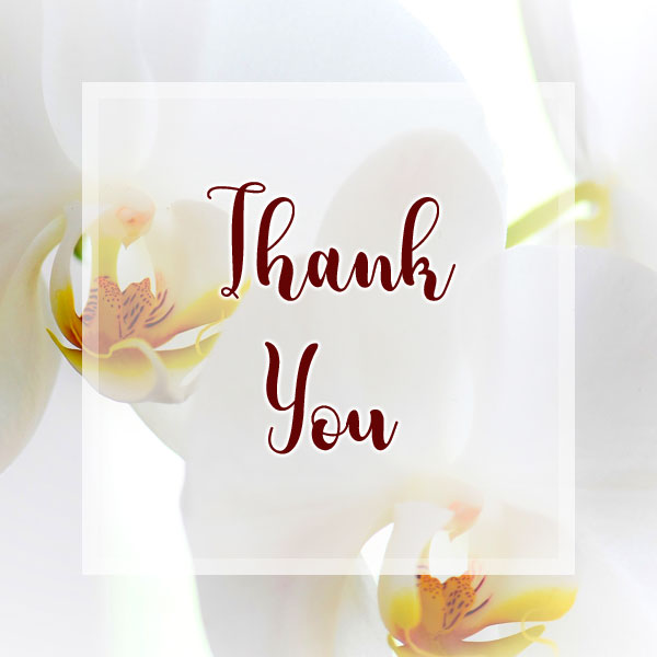 Thank You - Orchid