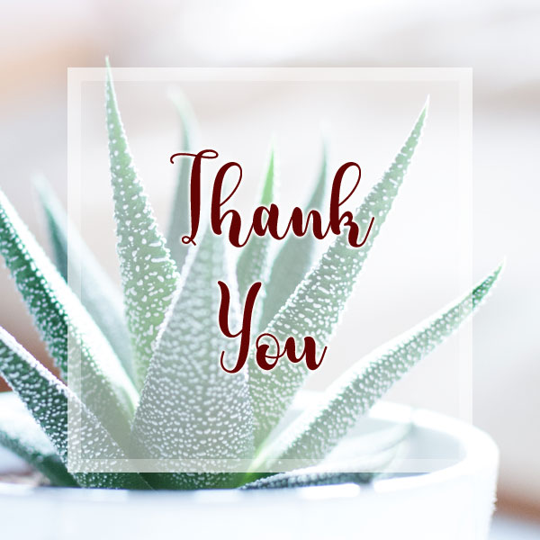 Thank You - Succulent