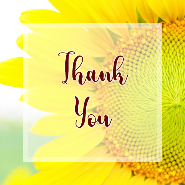Thank You - Sunflower