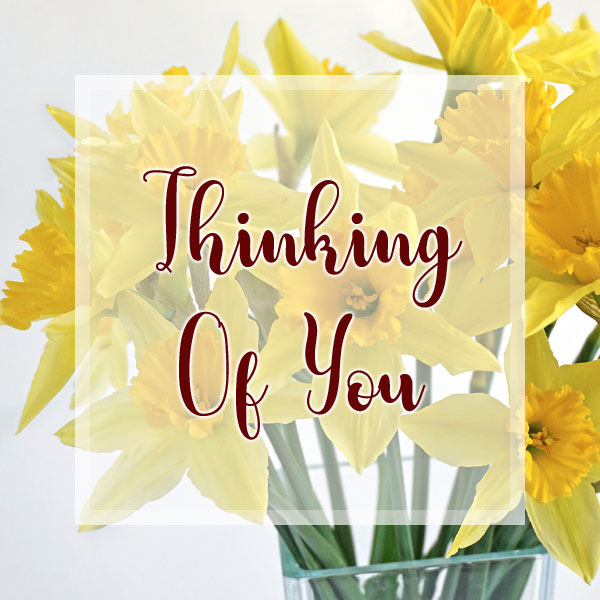 Thinking of You - Daffodils