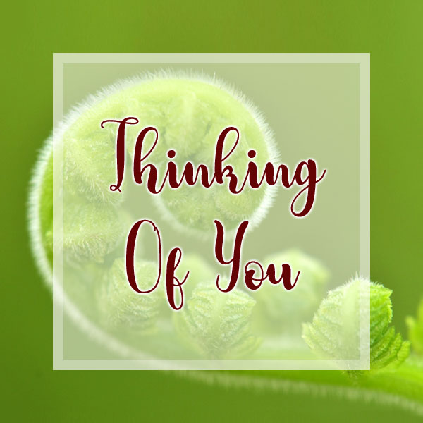 Thinking of You - Fern Frond